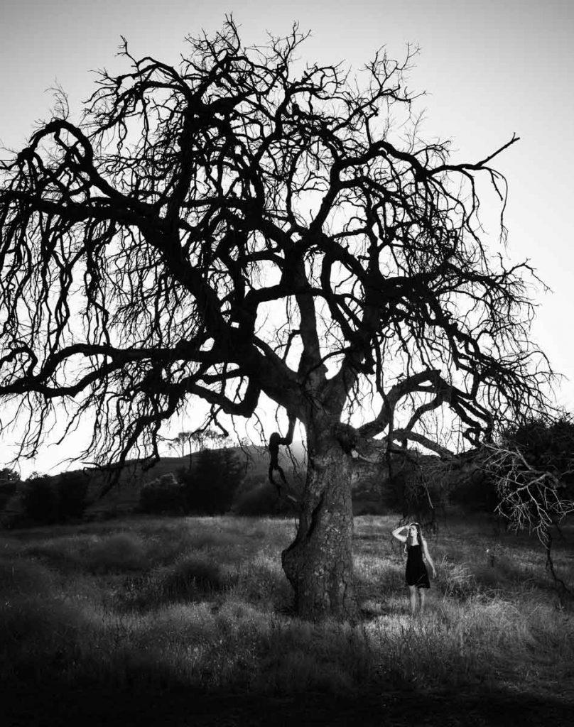 Grace and oak tree